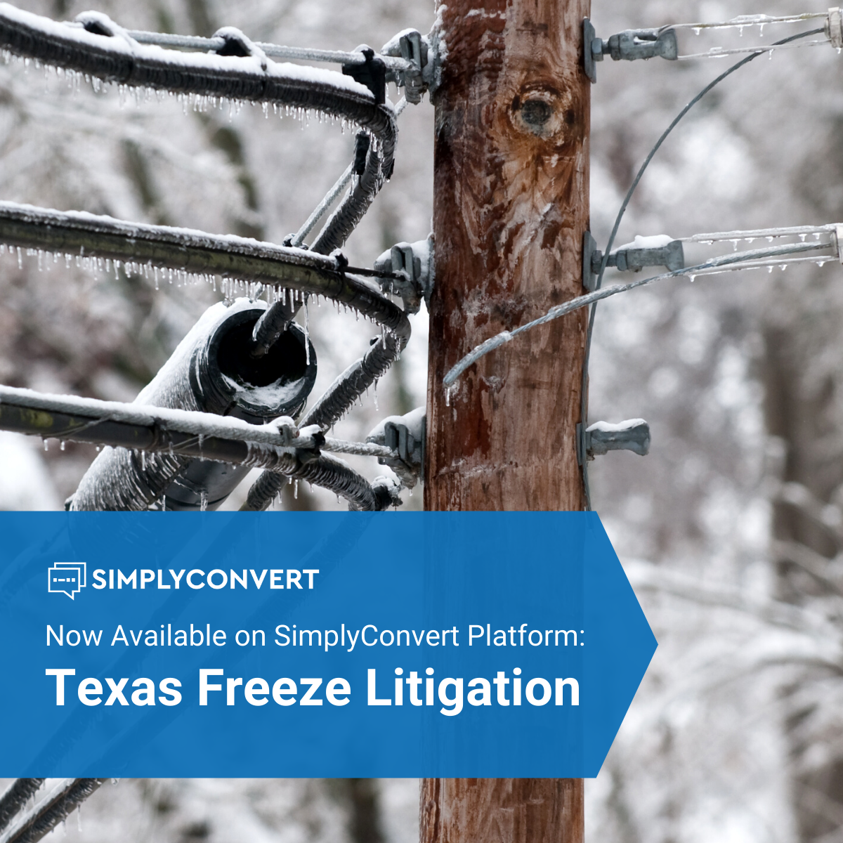Texas Freeze Litigation