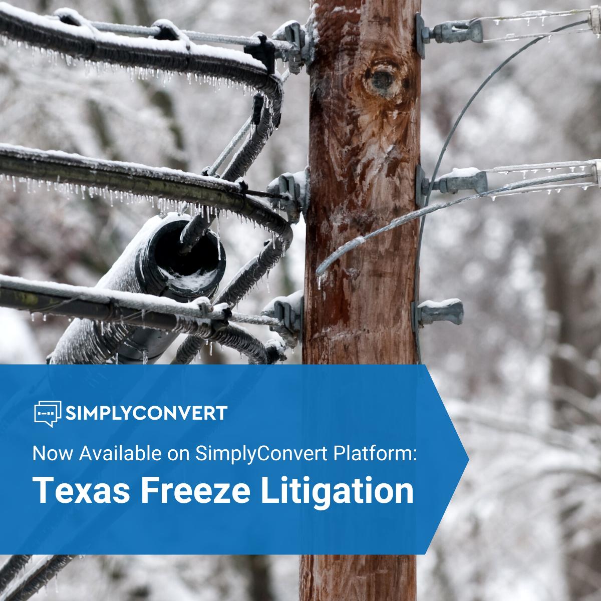 Texas Freeze Litigation